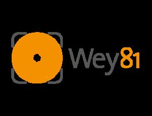 Wey81